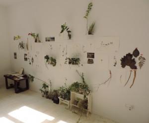 Marga-Steinwasser_SUBTERRANEA-UNDERGROUND-2014_Galerie-an-der-Ruhr_Muelheim_Germany_Foto_Ivo_Franz