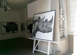 Nashorn_von_Herbert_Siemandel-Feldmann_in_der_Ruhrstr.3_in_Muelheim_Foto_by_Ivo_Franz,Galerie_an_der_Ruhr_Ruhr-Gallery
