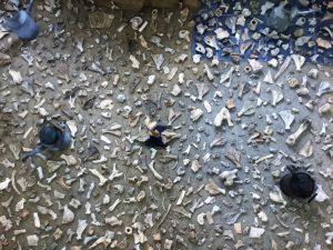 """""""Pollock Bone Field"""" von JOTT KAA zur Ausstellung """"Jackson Pollock Visiting"""" in der Galerie an der Ruhr, Mülheim"""